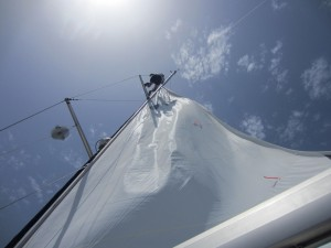 Thane fixing the mainsail