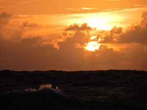 And another sunset--catching a wave.